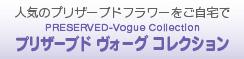 PRESERVED-Vogue Collection プリザーブド ヴォーグ コレクション